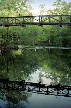 Lynnette Johns - Bridge Reflections
