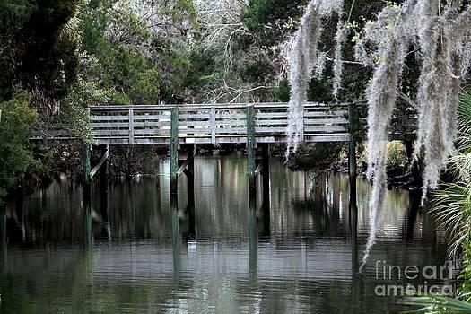 Bridge Reflections by Theresa Willingham