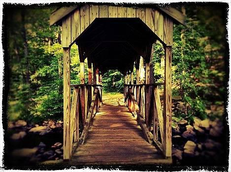 Bridge to Serenity  by Lisa  Esposito