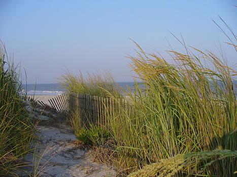 Brigantine Beach by Jaime  Manning