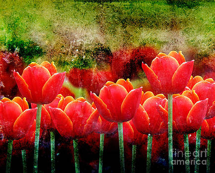 Bright Red Textured Tulip Flower by Angela Waye