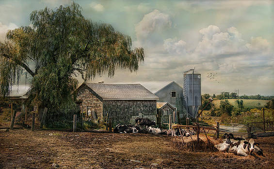 Bucolic Bliss by Robin-Lee Vieira