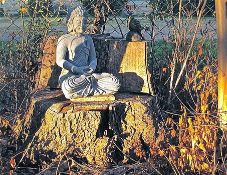 Frank SantAgata - Buddha Nature