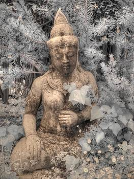 Buddha Nature by Jane Linders