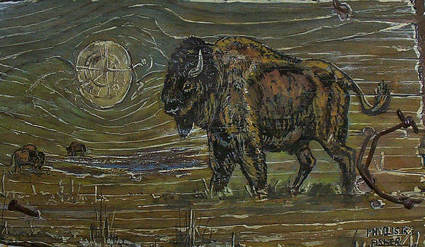 Buffalo Wallow by Phyllis Mae Richardson Fisher