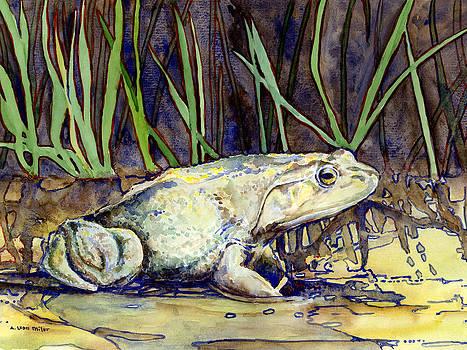 Bullfrog by A Leon Miler