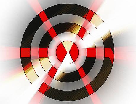 Bulls Eye by Susan Leggett