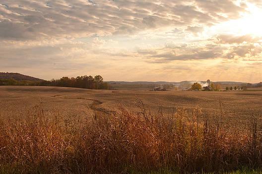 Randall Branham - Burning leaves on the Farm