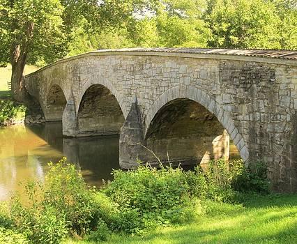 Burnside Bridge by Trish Pitts