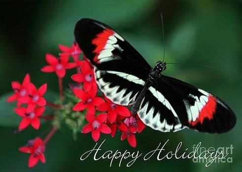 Sabrina L Ryan - Butterfly Holiday Card