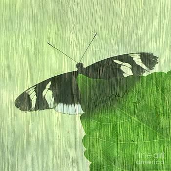 Butterfly on Leaf by Pamela Rose Hawken