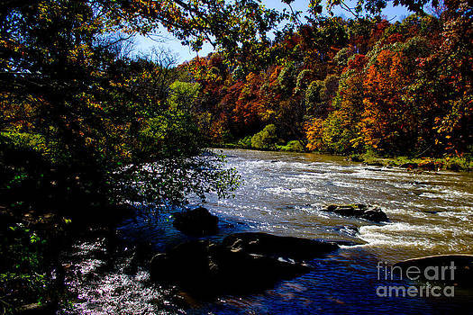 By The River by Tom Carriker