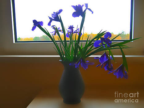 By the window by Anita Antonia Nowack