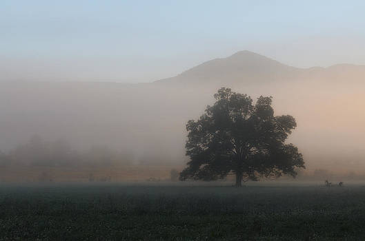 Cades Cove by Eric Haggart