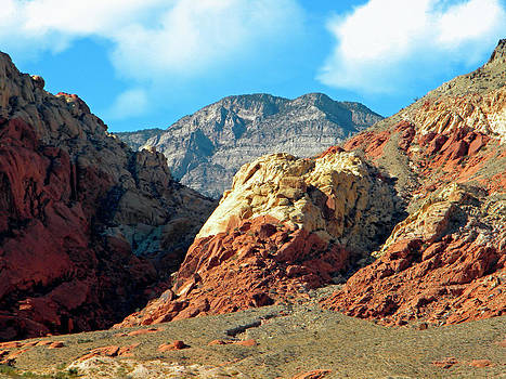 Frank Wilson - Calico Basin Nevada