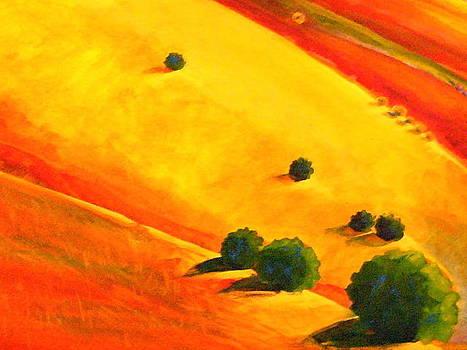 California Hills I by Robin Zuege