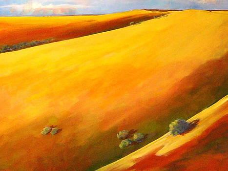 California Hills II by Robin Zuege