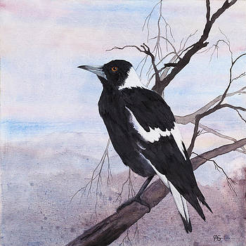 Call of the Magpie by Carol McLagan