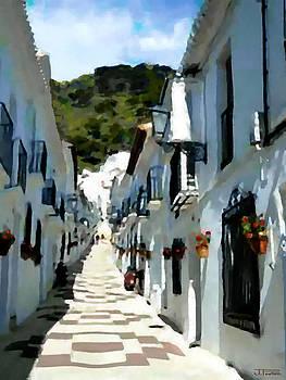 Calle San Sebastion by Jann Paxton