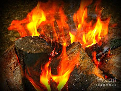 Camp fire by Ashley Vipond