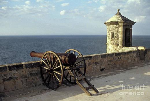 John  Mitchell - Campeche Cannon Mexico