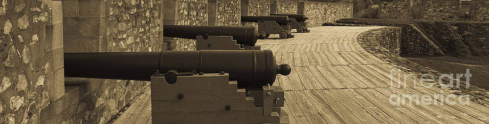 Darcy Michaelchuk - Cannons at Louisberg Fortress