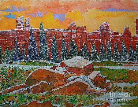 Canyonlands Sunrise Utah by Donald McGibbon