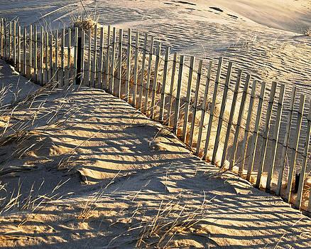 Cape Cod Beach Fence by Peggie Strachan