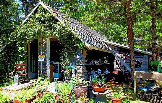 Michelle Wiarda - Cape Cod Lavender Farm