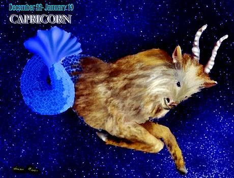 Capricorn by Diane Haas