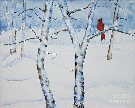 Cardinal by Joan Putnam