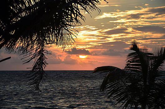 Caribbean Sunrise by Ken  Collette