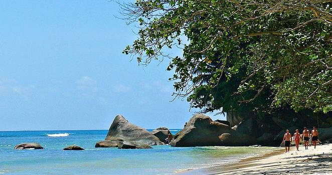Caribe Beach by Jenny Senra Pampin