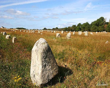 Diana Haronis - Carnac Standing Stones