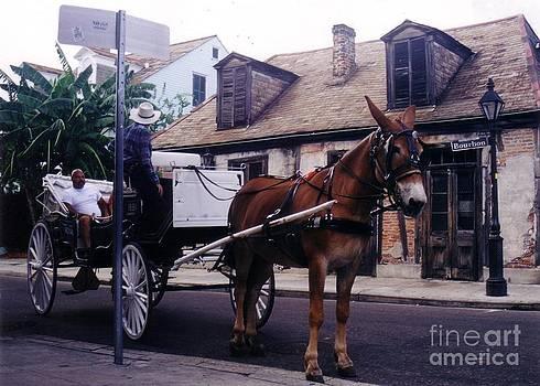 John Malone - Carriage on Bourbon St