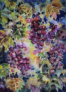 Cascade by Ann  Nicholson