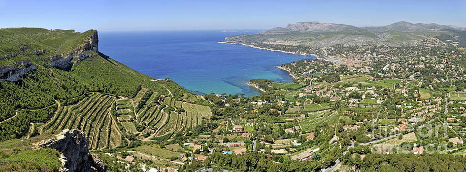 Sami Sarkis - Cassis village with vineyards on Mediterranean coast
