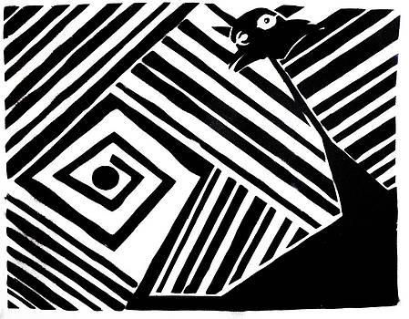 Cat illusion by Alexandra-Flaminia Boc