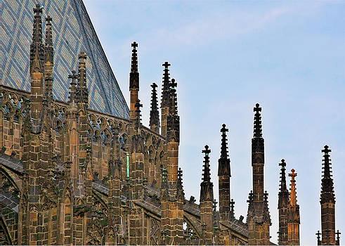 Christine Till - Cathedral of SS Vitus - Prague Castle Hradcany - Prague