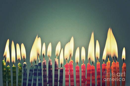 Celebrate by Catherine MacBride