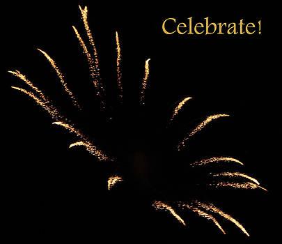 DazzleMe Photography - Celebrate