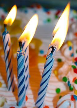 Celebrate by Shaileen Landsberg