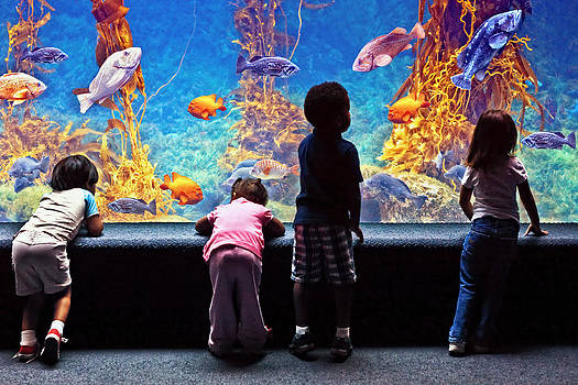 Celebrating Life Under the Sea  by Donna Pagakis