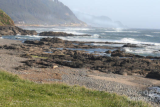 Central Oregon Coast 1 by Terri Johnson