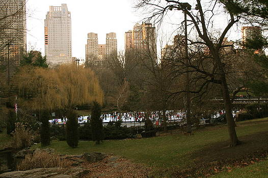 Central Park NYC  by Amy Savell