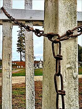 Chains by Lisa  Esposito