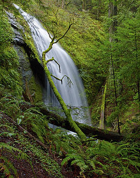 Chamberlin Creek Falls by Orlando Guiang