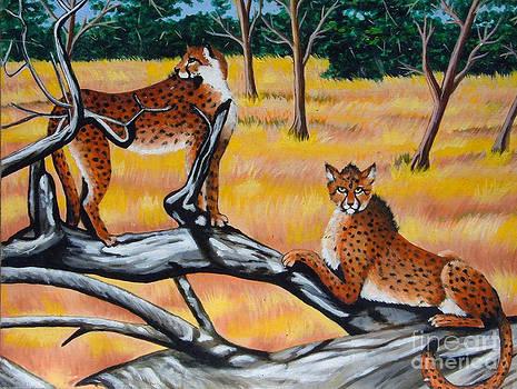 Cheetahs by Annette Jimerson