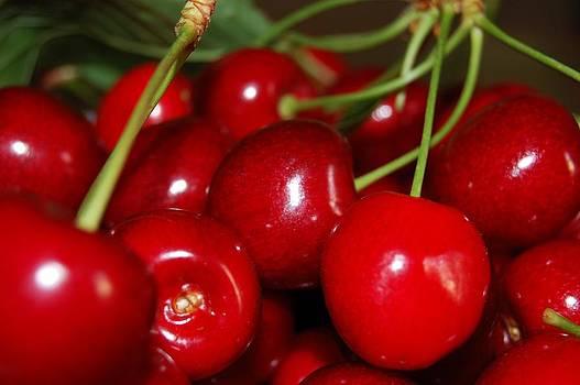 Cherries by Lenka Kendralova