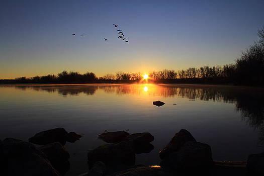 Cherry Creek Sunrise by Mike Kim